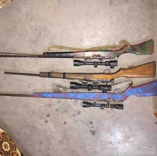 四人在商洛枪杀野生动物 2只斑羚1只麂子被杀