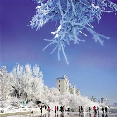 鄂尔多斯野生动物园疯狂动物城开启冰雪奇缘