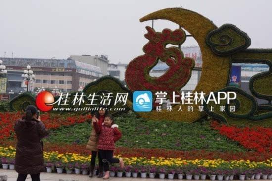 80万盆鲜花扮美桂林喜迎春节 营造祥和喜庆气氛
