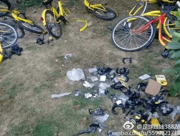 深圳交警感慨:春节成共享单车搬运工