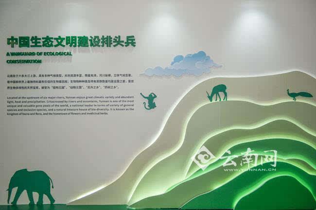 """绿色背景展板主题是""""中国生态文明建设排头兵"""""""