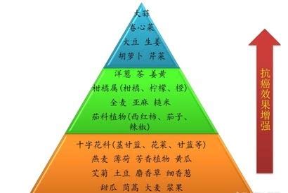 2013公共营养金字塔