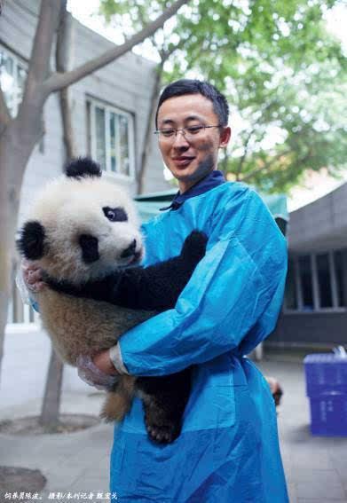 饲养世界上最萌的动物是一种怎样的体验