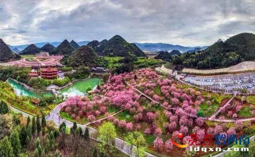 4月1日,笔者来到兴义市贵州醇风景区,这里环境优美,空气清新.