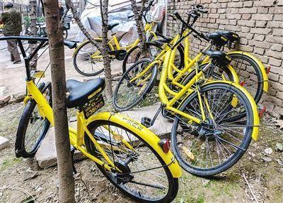 共享单车不文明乱象该如何终结