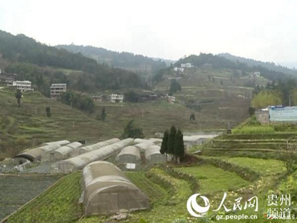 习水县程寨镇:完善基础设施建设 大力发展乡村旅游