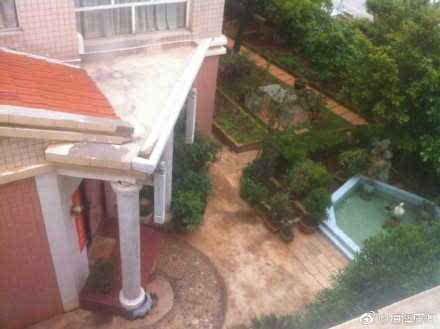 曲靖官员将小区绿化带改成私家花园 别墅里挖水池放仙鹤
