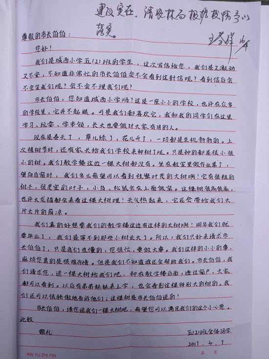 """浙江一小学生写信向市长""""要棵大树"""" 农林局送26棵"""