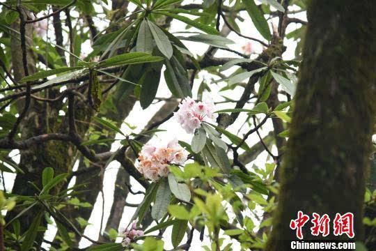 http://www.1207570.com/youxiyule/10991.html
