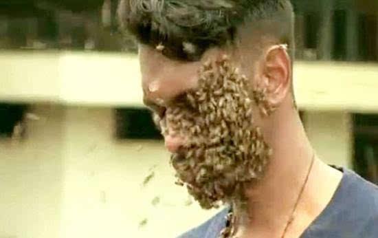 印度男子头上布满6万只蜜蜂变蜂窝 称无痛感