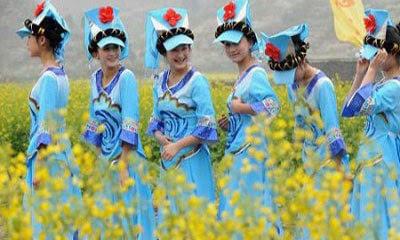如果把云南各地喜欢美女,你比作哪个?街头撸美女图片