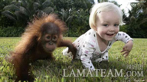 可爱萌宝宝模仿小动物,让你笑到停不下来啊