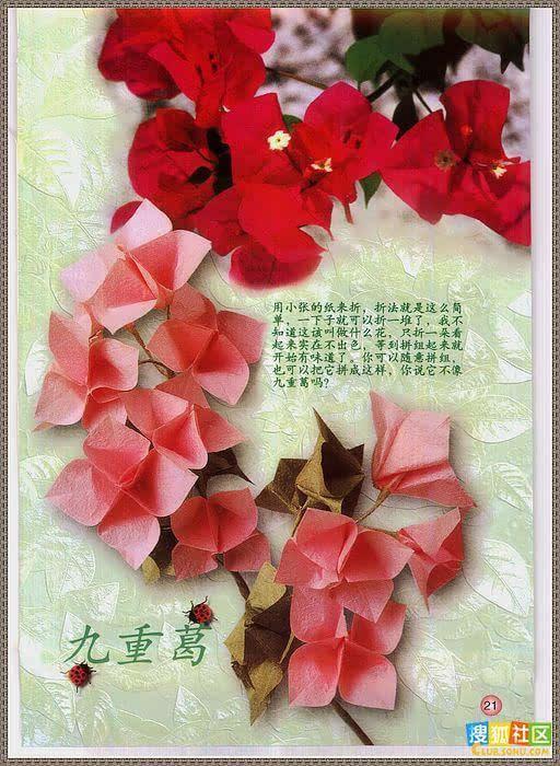 各种花的折纸方法