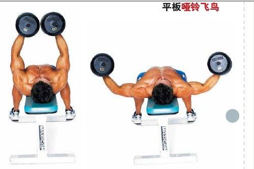 胸肌哥:教你锻炼胸肌的最快方法!
