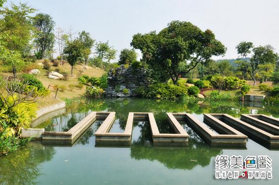 海珠湿地公园(Petrel 转载) - @巢 - 爱-情-鸟@巢