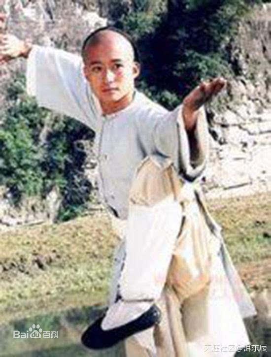 吴京的电视剧长大的,太极宗师啊,阿飞啊,孟星魂啊,大头啊,少林寺那个图片