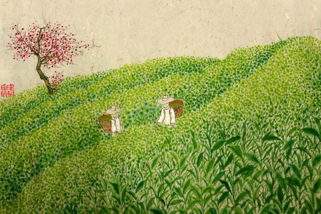 植物画画图片大全