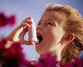 哮喘哮喘日,v哮喘赛艇,刻不容缓-搜狐世界400与250比较图片