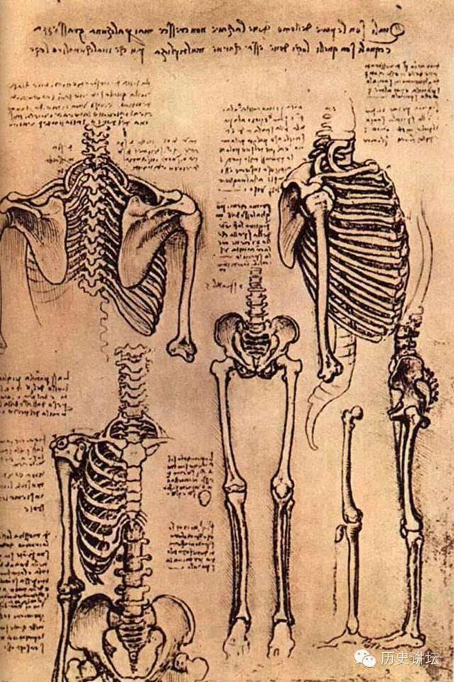 达·芬奇研究过心脏,他发现心脏有四个腔,并画出了心脏瓣膜.