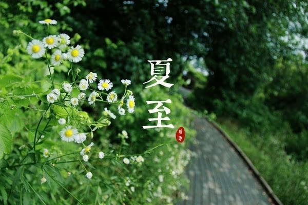 4627,夏至时节白昼长(原创) - 春风化雨 - 春风化雨的博客