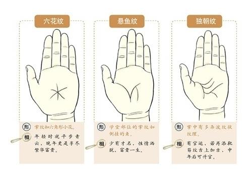 史上最罕见的手相掌纹图解大全