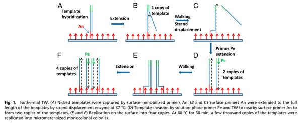 电路 电路图 电子 设计 素材 原理图 600_246