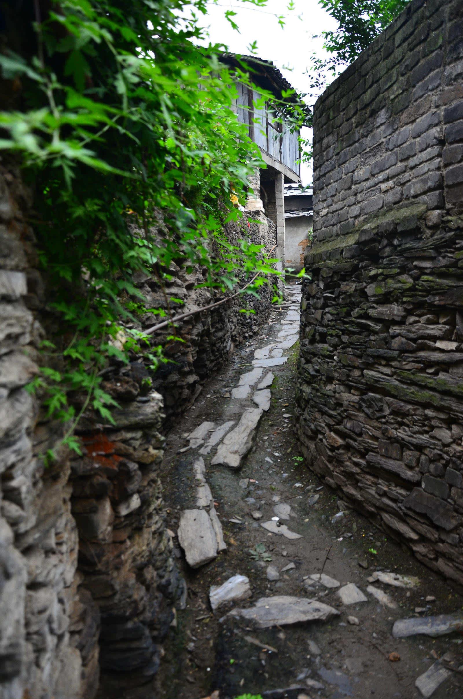 草地石板路-石板路围绕着的蜀河古镇