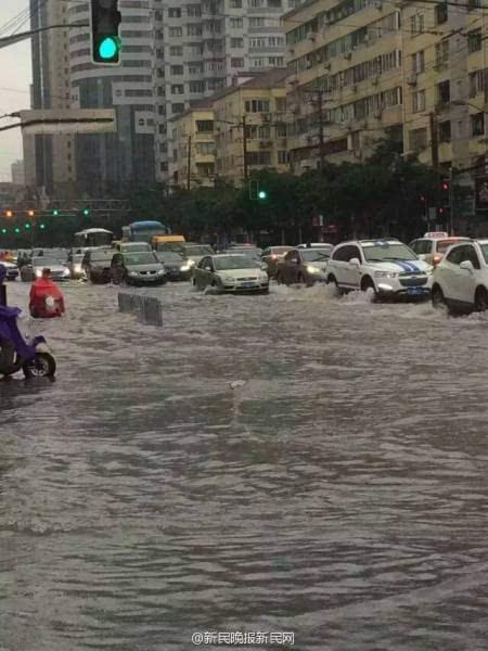 上海暴雨牌照_上海暴雨河水倒灌 市民划船出行