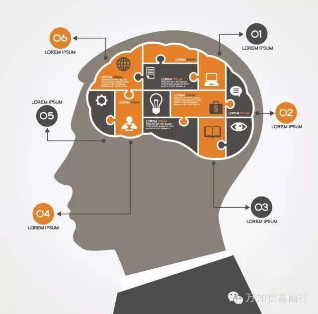 """酒投喂小鼠,然后观察具有记忆和学习功能的大脑器官——""""海马""""的变化."""