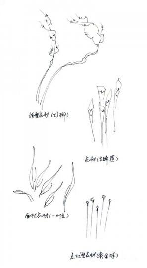 图解花瓶插花:七步插制有东方韵味的作品