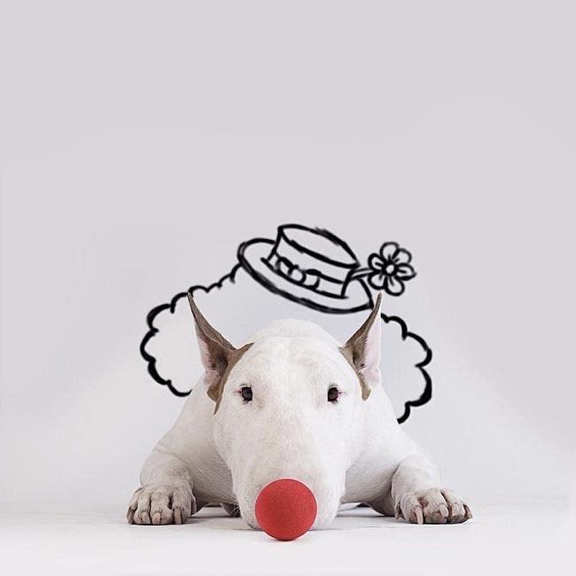 可爱小狗卡通围墙