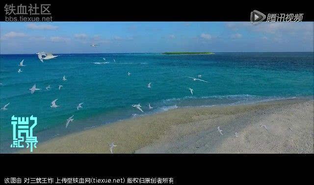三沙岛屿高清航拍 看的我都流口水了(图)