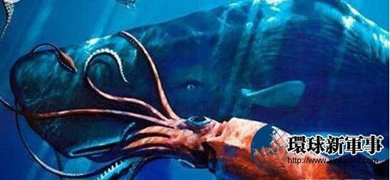 神秘大海蛇的真身被曝光了 出乎所有人的意料