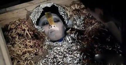 美人鱼尸体惊现澳洲海滩 外星人竟然真的存在 胆小勿点