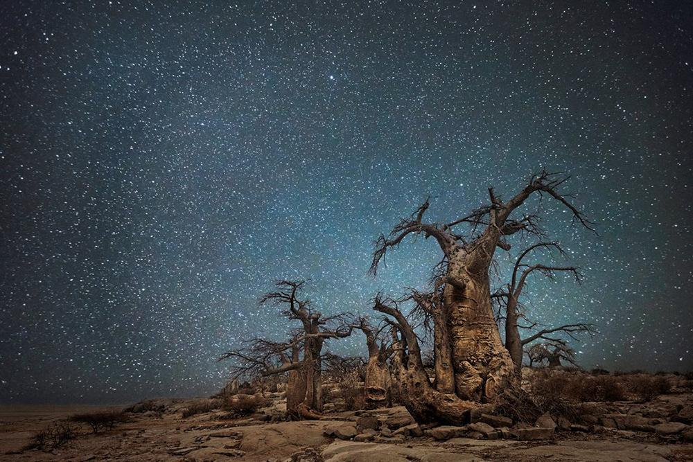 灿烂星空下的百岁孤独