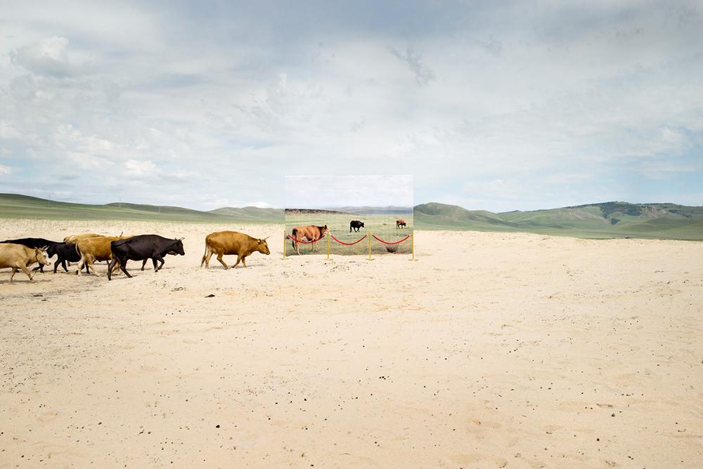 摄影 考古学/未来主义的考古学摄影
