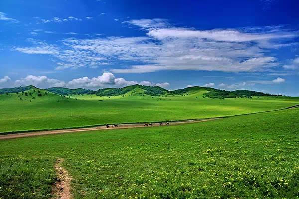 保存世界上稀有的高山浮屠草甸,且属于非常完好,旅游资源,得天独厚.国际塔攻略完美草原图片