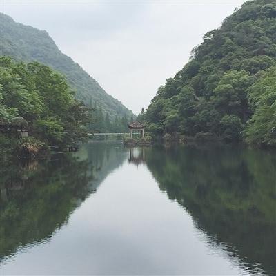 宁海县深甽镇内卧龙湿地深处有高端静谧的森林温泉.