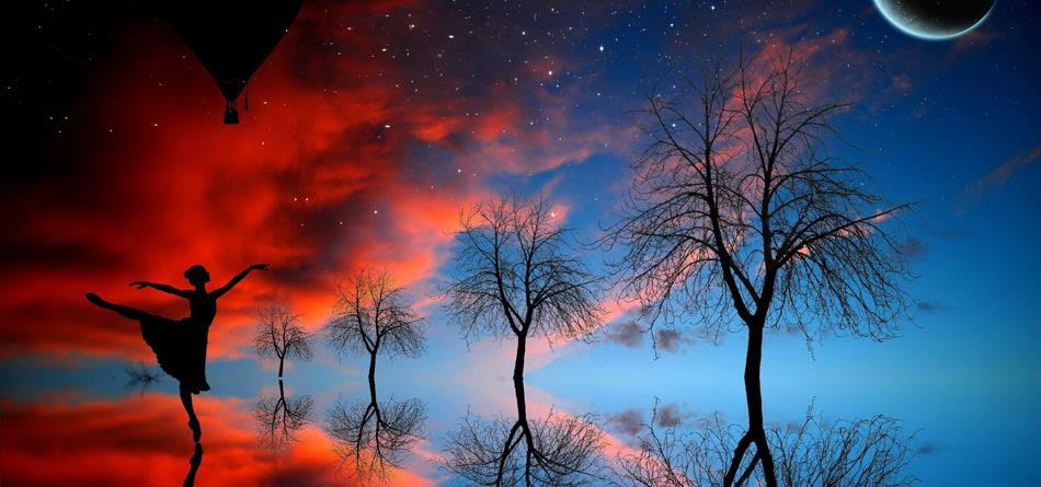 月亮 树木 倒影
