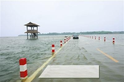 """5月份以来,多场强降雨让鄱阳湖不断""""发福"""",游客们期盼的""""最美水上公路"""