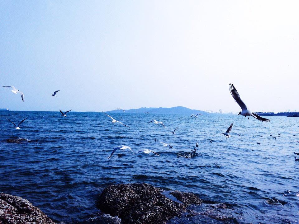 唯美意境风景海边蓝色系伤感意境图片