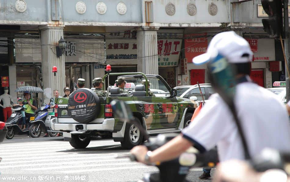 广西玉林狗肉节图片,2015 玉林狗肉节 爱狗人士 广西玉林狗高清图片