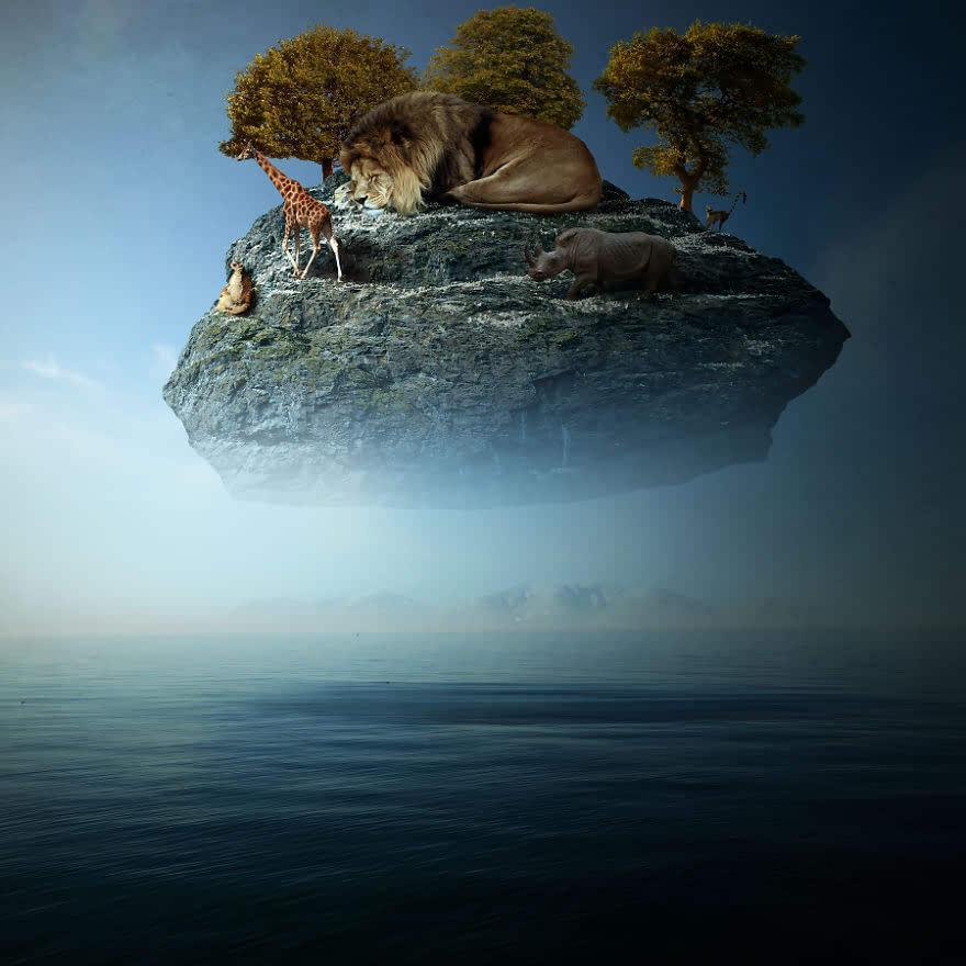 超现实主义影像:动物占领地球