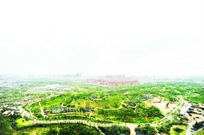 室内展馆——国际园林艺术馆,美食体验的舌尖上的中国,动物园博里放飞