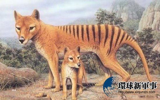 已灭绝的动物竟离奇再现:难道连它也要复活?