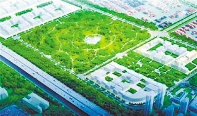 海港生态公园设计图.