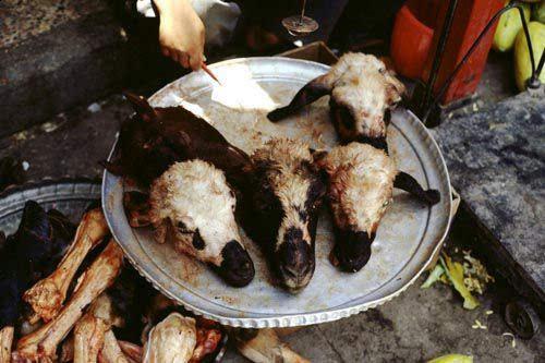 盘点全球十大恶心食品 看一眼就让人反胃