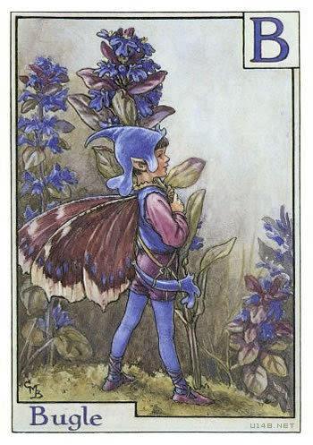 英国花仙子手绘