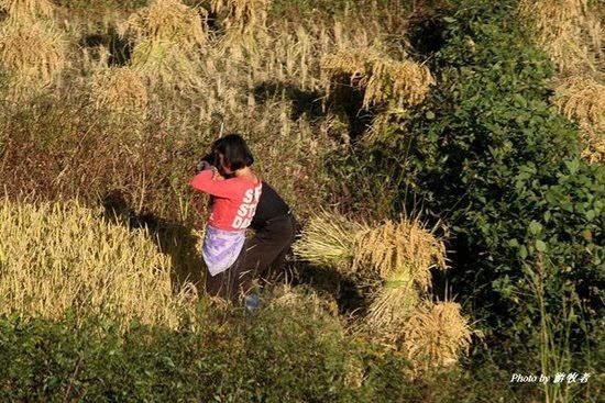 实拍朝鲜农村生活现状 是不是真的很穷?