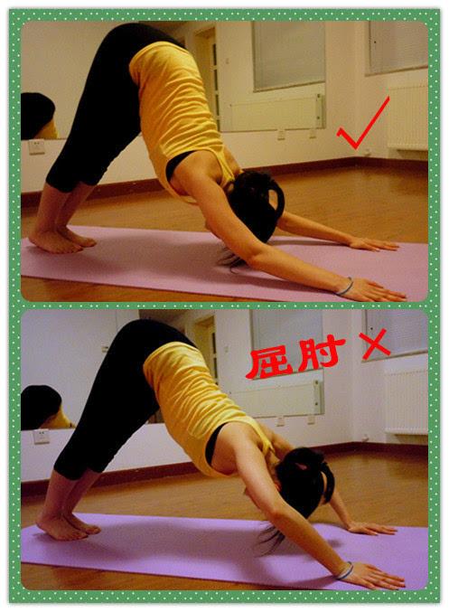 12个常见瑜伽体式正误对比(收藏)图片
